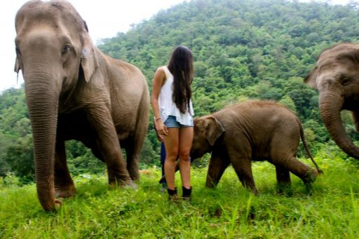 Loop Abroad Student with Elephants