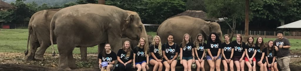 Group of students in front of a herd of elephants