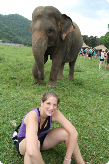 loop students with elephant