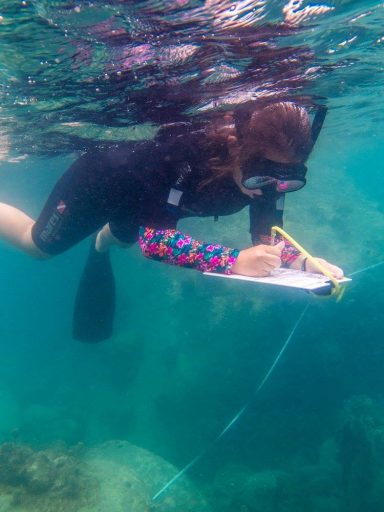 Loop Abroad student taking notes underwater