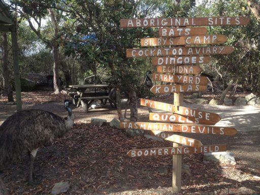 Signpost in Australian outback
